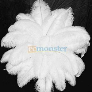 10PCS Wholesale Quality Natural Ostrich Feathers 30-35 cm/12-14 Inch White Color