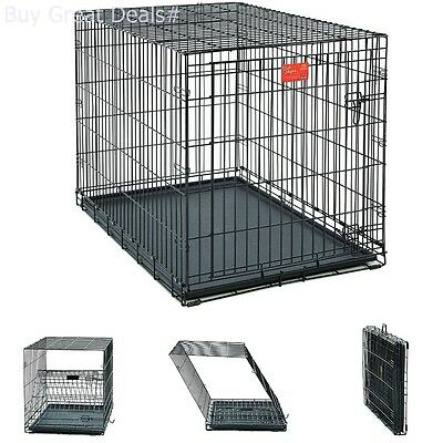 Large Midwest Life Stages - Midwest Life Stages 42 Inch Single-Door Folding Metal Large Dog Crate Pet Kennel