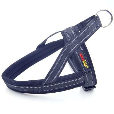Best No-Pull Dog Pet Harness Vest Collar Soft Nylon Walk Out Hand Strap