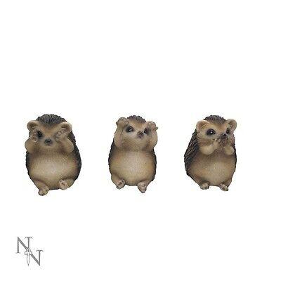 Nemesis Now THREE WISE HEDGEHOGS - See Hear Speak No Evil - Cute Figure Set
