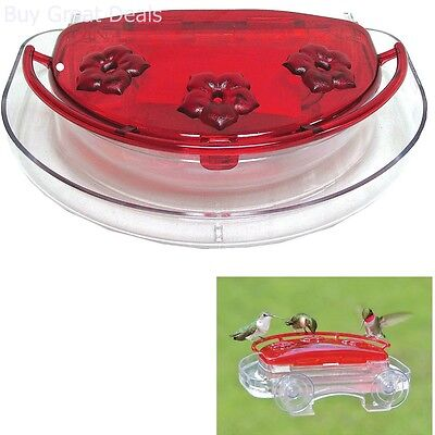 Jewel Box Hummingbird Feeder Easy Viewing Windows Drink Feeding Pet Bird Outdoor