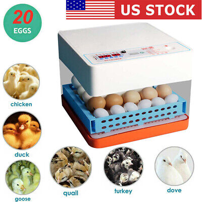 Egg Incubator 20 Eggs Fully Digital Automatic Hatcher for Hatching Chicken Birds