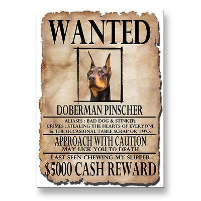 DOBERMAN PINSCHER Wanted Poster FRIDGE MAGNET No 2 DOG