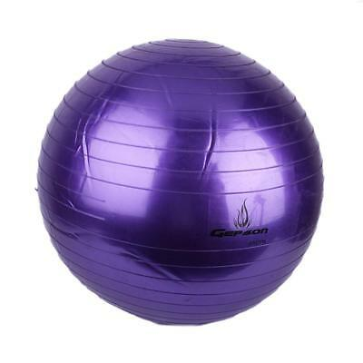 65cm Exercise Fitness Aerobic Ball for GYM Yoga Pilates Pregnancy Birthing