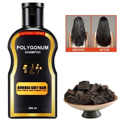 Polygonum Shampoo Multiflorum Hair Darkening Care Shampoo Ginger Natural Essence