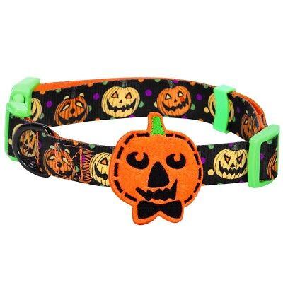 Blueberry Pet Halloween Designer Dog - Halloween Pet Collars