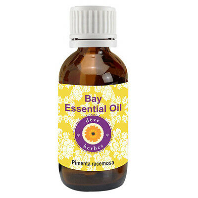 D Ve Herbes Pure Bay Essential Oil  Pimenta Racemosa  100  Natural Therapeutic G