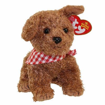 TY Beanie Baby - ROWDY the Dog  - MWMTs Stuffed Animal Toy
