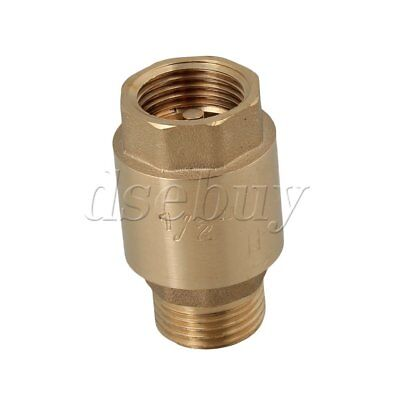 Bspp 12 Female Male Thread In-line Check Valve Spring Vertical