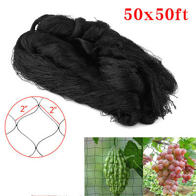"50'×50' Anti Bird Net Netting 2"" Mesh Poultry Fruit Aviary Vegetable Crop Garden"