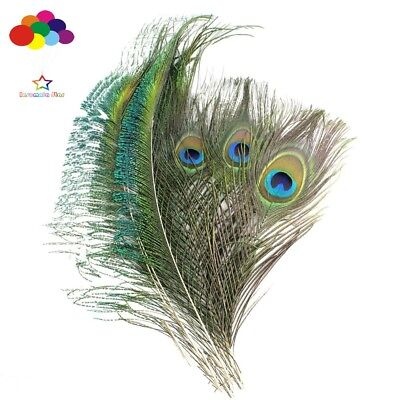 100 Pcs natural Peacock Feathers 10-12 inch or 12-15 inch DIY wedding decoration Peacock Feathers Wedding