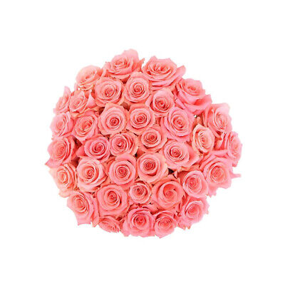 50 Fresh Roses delivered to your door - Amsterdam Fresh Cut Flowers