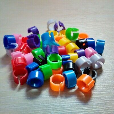 10 colors Chicks Rings 100Pcs 8mm Clip Poultry Bird Pigeon Plastic Sale