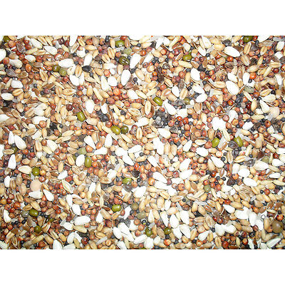 Johnston & Jeff Pigeon Trapping Mixture Type 66 12.5Kg