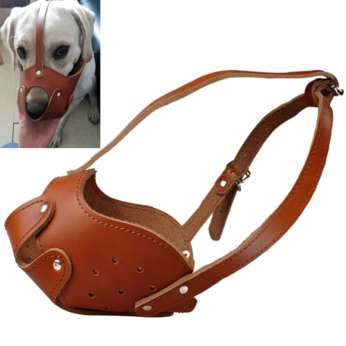 Leather Muzzle for Large Dog Adjustable Bull Terrier Pitbull