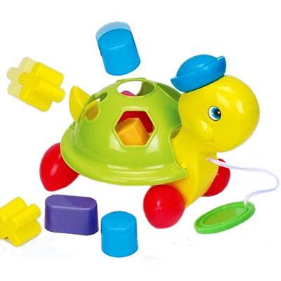 Baby Kleinkind Nachziehspielzeug Steckspiel Motoriktrainer Bodenspielzeug Formen