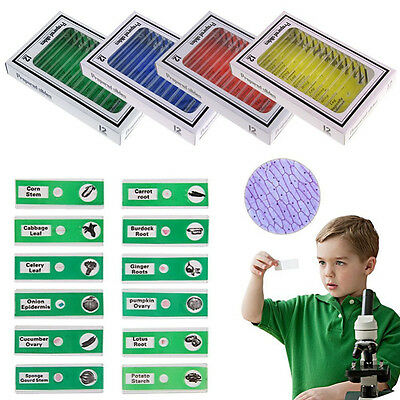 48pcs Plastic Microscope Animals Insects Plants Flowers Prepared Slides For Kids
