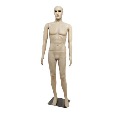 Full Body Male Mannequin Realistic Display Head Turns Dress Form Plastic W Base