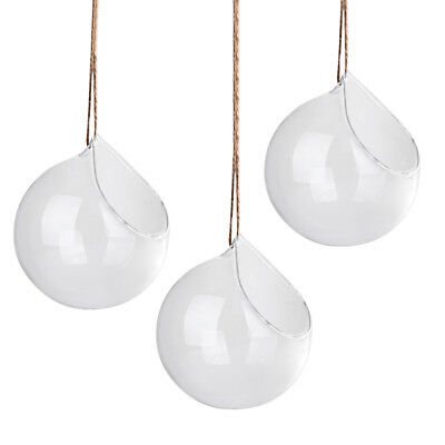 3PCS Hanging Plant Flower Clear Glass Ball Vase Planter Pot Terrarium Container