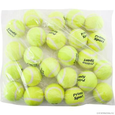 24 New Tennis Balls Yellow Ball Games Dog Pet Toy Pets Bouncing Sports Games Fun