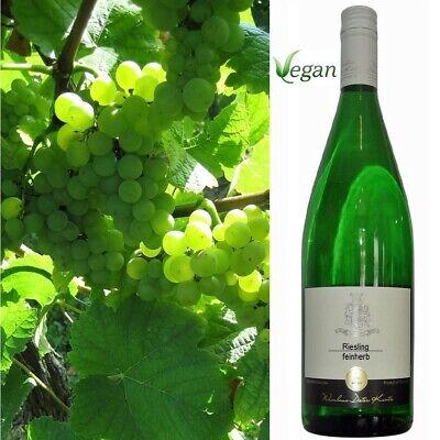 Riesling feinherb Wahnsinns Weißwein Jahrgang 2019 Dieter Kuntz 6 Literflaschen