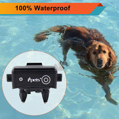 Rechargeable Collar Receiver - Ipets Rechargeable Waterproof Extra Dog Receiver Collar For E-Collar PET619S