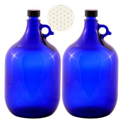 2 X Globo de Cristal Botella 5 Litros Azul Flor la Vida...