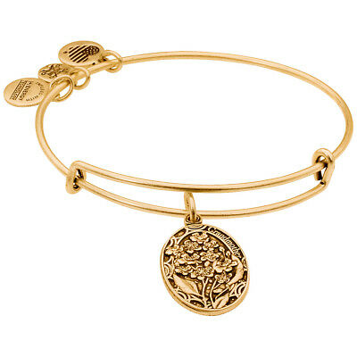 Alex And Ani Grandmother Charm Rafaelian Gold Finish Bangle Bracelet A16EB12RG