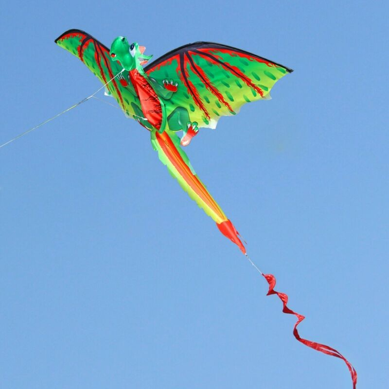 Outdoor Large 3D Dragon Kite Single Line w/ Tail Classical S