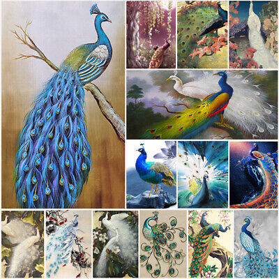 Peacock Oil Painting Canvas Prints Art Wall Picture Unframed Modern Home Decor ()