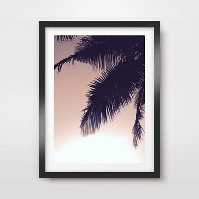 PALM TREE LEAF SILHOUETTE ART PRINT Photography Poster A4 A3 A2 Exotic ()