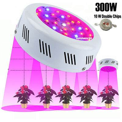 300W UFO LED Grow Light Lamp for Plants Hydroponic Organic Flower Full Spectrum for sale  China