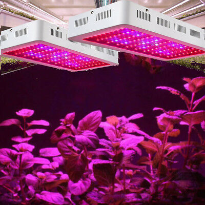 Led Grow Lights Plants - 2000W LED Grow Light Kits Full Spectrum UV for Hydros Flower Plants  Hydroponics