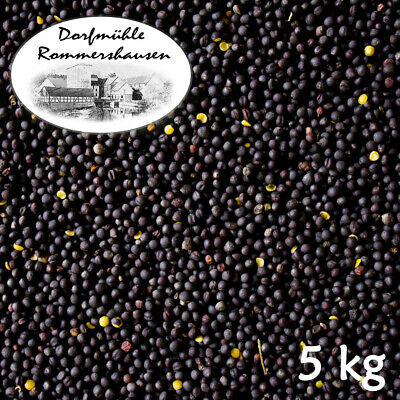 5 kg Semillas de Colza Limpia Negro Black Rapeseed Aceite Almohada Térmica...