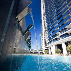 surfers paradise room to share Surfers Paradise Gold Coast City Preview