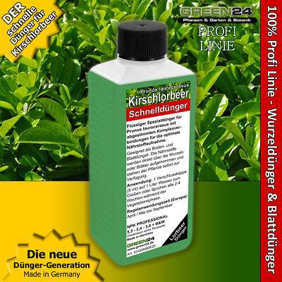 Kirschlorbeer-Dünger Flüssigdünger Prunus laurocerasus Lorbeerkirsche