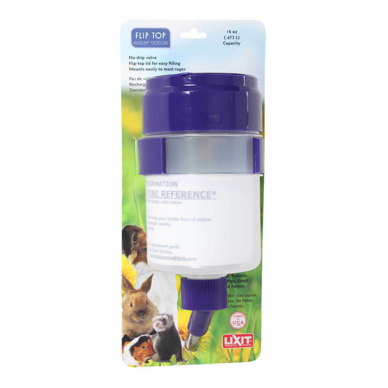 Lixit Flip Top Water Bottle - 16 oz