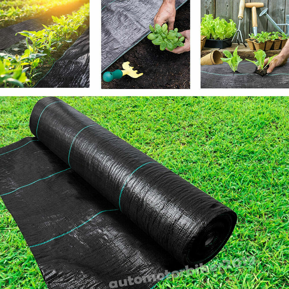 1m x 25m Roll The Mesh Company Heavy Duty 100GSM Weed Control Landscape Fabric 1m /& 2m Wide Rolls Woven Cover Sheet