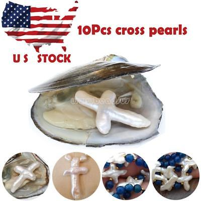 Pearl Cross (New 10Pcs Akoya Freshwater Oysters with Cross Shape Pearl US Stock DIY)