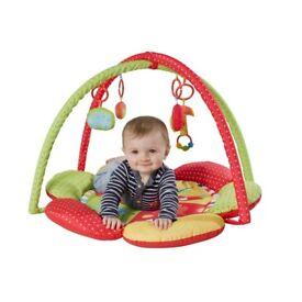 Baby Safari Gym New