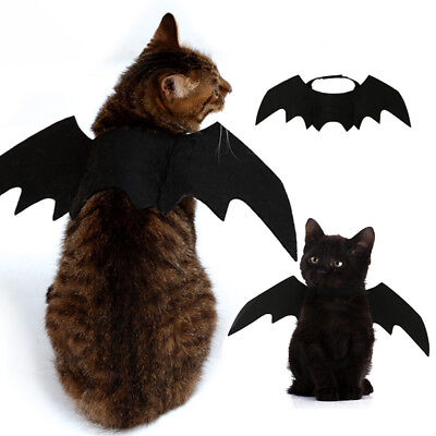 Animal Pet Dog Cat Bat Vampire Halloween Fancy Dress Costume Outfit Wings uk