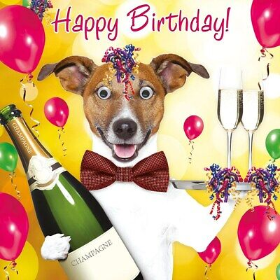 Jack Russell Birthday Card Party Time 3D Goggly Eyes Funny Dog Lovers Card NEW