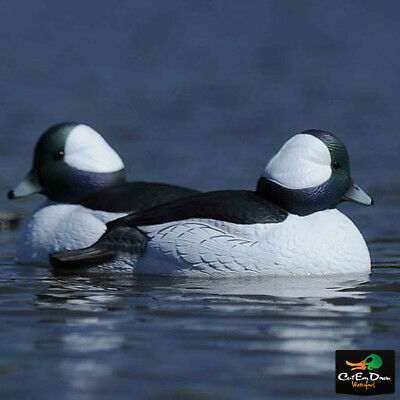 AVERY GREENHEAD GEAR GHG FOAM FILLED OVERSIZE BUFFLEHEAD DUCK DECOYS 1/2 DOZEN 6