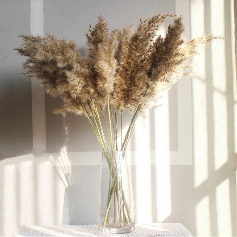 Home Decoration - 10Pcs Natural Dried Pampas Grass Reed Flower Bunch Bouquet Home Wedding Decor