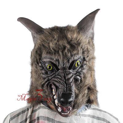 Beast Halloween Mask (Halloween Werewolf Mask Scary Horror Animal Wolf Costume Fancy Dress Hairy)