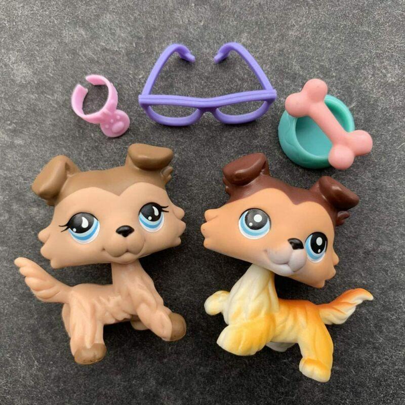 Authentic Littlest Pet Shop lps Collie 58 lps Collie 893 with lps Accessories