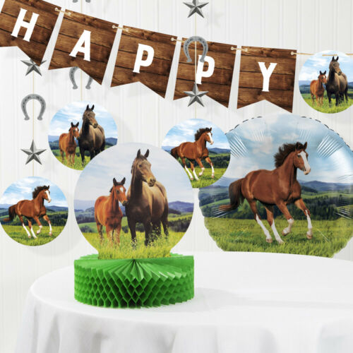 Wild Horse Birthday Decorations Kit