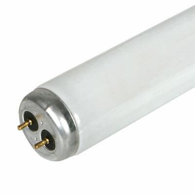 GE 10205 F20T12//D 24 Inch 20 watt 6500K Fluorescent Tube Bulb T12 Shape