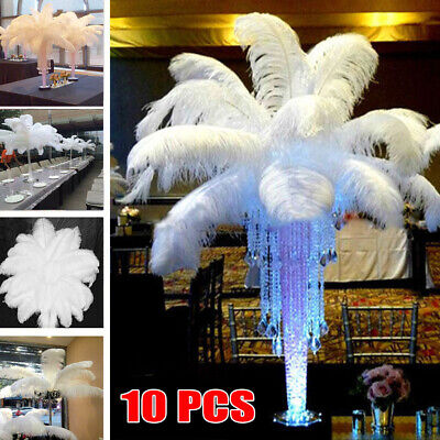 White Ostrich Feathers (10PCS White Large Natural OSTRICH FEATHERS