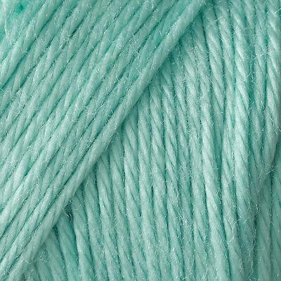 Caron Simply Soft - Robin's Egg Yarn